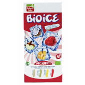 Inghetata BIO ICE fructe speciale, vegana, La Finestra Sul Cielo 400ml